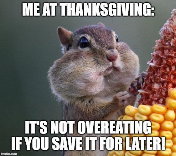Thanksgiving Squirrel - Imgflip