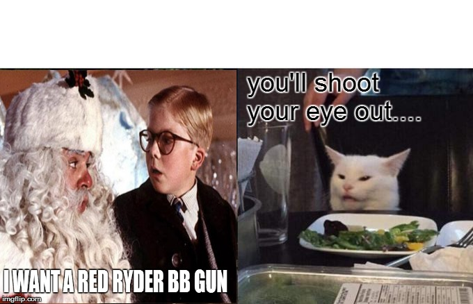 you'll shoot your eye out.... | image tagged in white cat,a christmas story,ralphie,woman yelling at cat | made w/ Imgflip meme maker