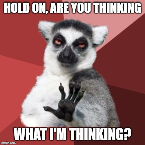 Chill Out Lemur Meme |  HOLD ON, ARE YOU THINKING; WHAT I'M THINKING? | image tagged in memes,chill out lemur | made w/ Imgflip meme maker