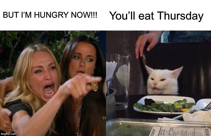 Woman Yelling At Cat Meme | BUT I'M HUNGRY NOW!!! You'll eat Thursday | image tagged in memes,woman yelling at cat | made w/ Imgflip meme maker