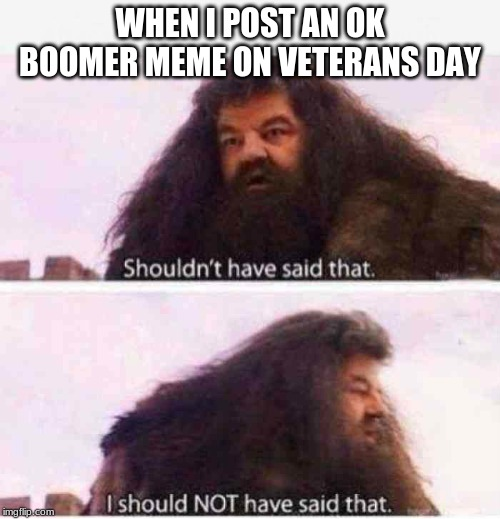 WHEN I POST AN OK BOOMER MEME ON VETERANS DAY | image tagged in ok boomer,veterans day,shouldn't have said that | made w/ Imgflip meme maker