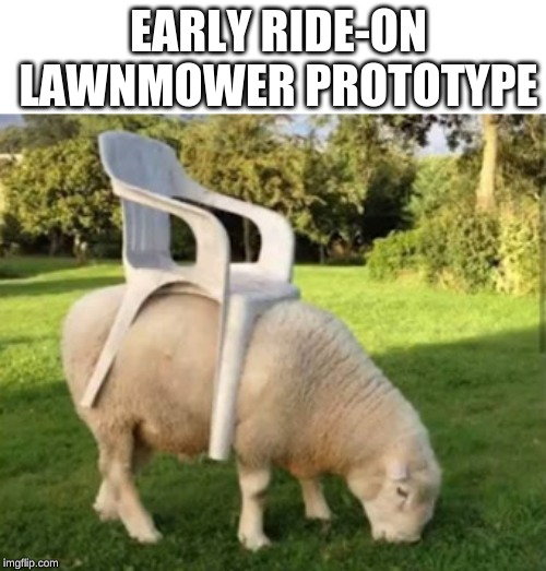 top speed: 20 kp/h | EARLY RIDE-ON LAWNMOWER PROTOTYPE | image tagged in memes,lawnmower,sheep,chair | made w/ Imgflip meme maker