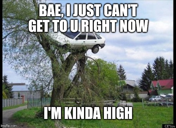 Secure Parking Meme | BAE, I JUST CAN'T GET TO U RIGHT NOW I'M KINDA HIGH | image tagged in memes,secure parking | made w/ Imgflip meme maker