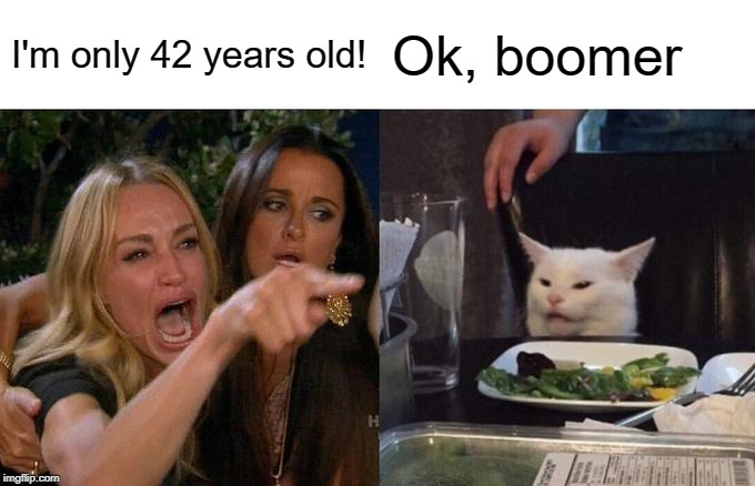 Woman Yelling At Cat Meme | I'm only 42 years old! Ok, boomer | image tagged in memes,woman yelling at cat | made w/ Imgflip meme maker