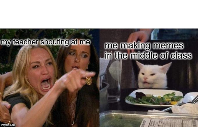 Woman Yelling At Cat Meme | my teacher shouting at me me making memes in the middle of class | image tagged in memes,woman yelling at cat | made w/ Imgflip meme maker