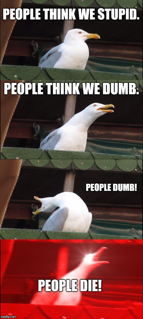 Inhaling Seagull Meme | PEOPLE THINK WE STUPID. PEOPLE THINK WE DUMB. PEOPLE DUMB! PEOPLE DIE! | image tagged in memes,inhaling seagull | made w/ Imgflip meme maker