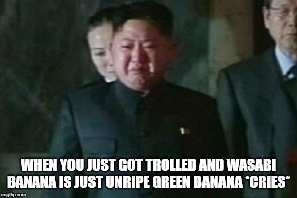 Kim Jong Un Sad |  WHEN YOU JUST GOT TROLLED AND WASABI BANANA IS JUST UNRIPE GREEN BANANA *CRIES* | image tagged in memes,kim jong un sad | made w/ Imgflip meme maker
