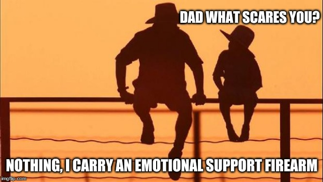 Open carry or concealed both work |  DAD WHAT SCARES YOU? NOTHING, I CARRY AN EMOTIONAL SUPPORT FIREARM | image tagged in cowboy father and son,open carry,concealed carry,2nd amendment,protect yourself,emotional support firearm | made w/ Imgflip meme maker