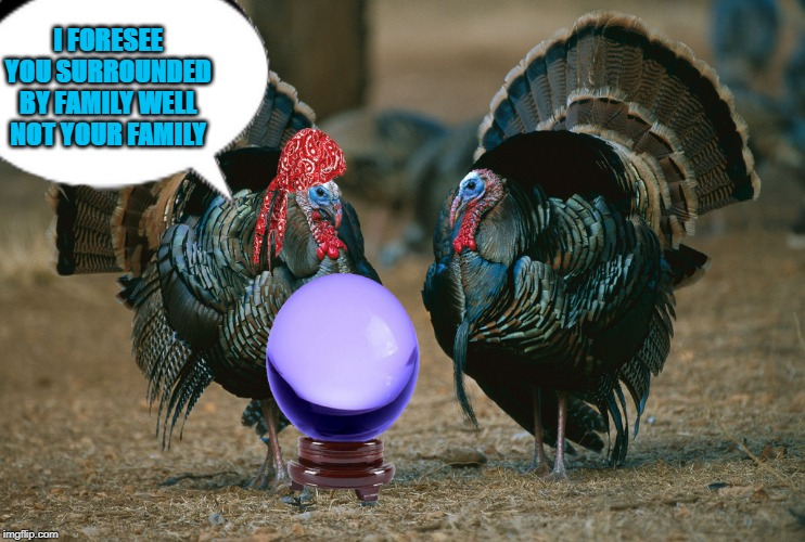 fortune teller | I FORESEE YOU SURROUNDED BY FAMILY WELL NOT YOUR FAMILY | image tagged in turkeys,prediction | made w/ Imgflip meme maker