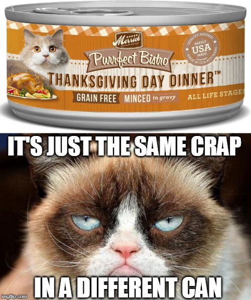 Image tagged in memes,grumpy cat not amused,cats ...