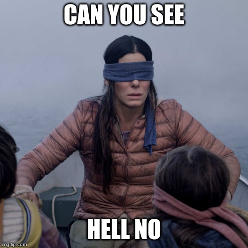 Bird Box |  CAN YOU SEE; HELL NO | image tagged in memes,bird box | made w/ Imgflip meme maker