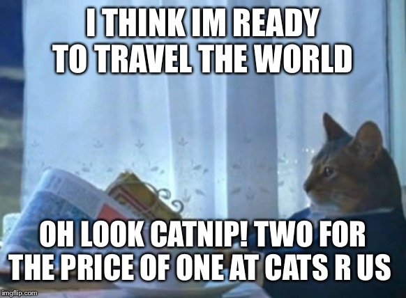 I Should Buy A Boat Cat | I THINK IM READY TO TRAVEL THE WORLD OH LOOK CATNIP! TWO FOR THE PRICE OF ONE AT CATS R US | image tagged in memes,i should buy a boat cat | made w/ Imgflip meme maker