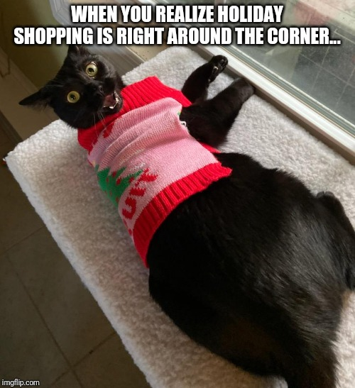 X-Mas'ied Cat | WHEN YOU REALIZE HOLIDAY SHOPPING IS RIGHT AROUND THE CORNER... | image tagged in x-mas'ied cat | made w/ Imgflip meme maker