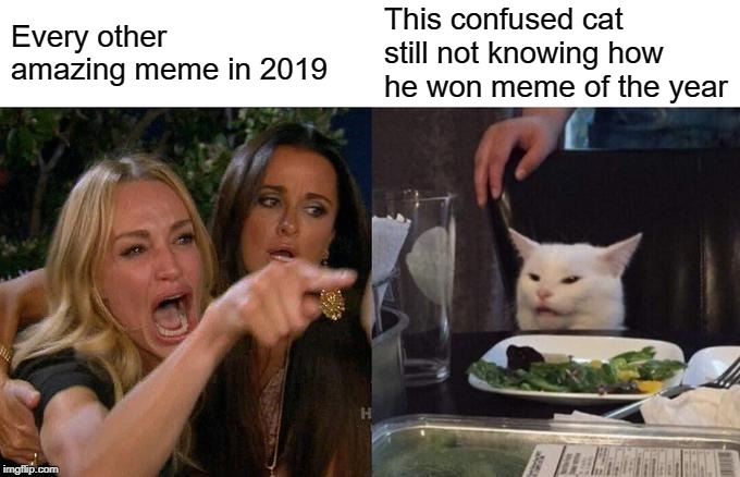 Woman Yelling At Cat Meme | Every other amazing meme in 2019 This confused cat still not knowing how he won meme of the year | image tagged in memes,woman yelling at cat | made w/ Imgflip meme maker
