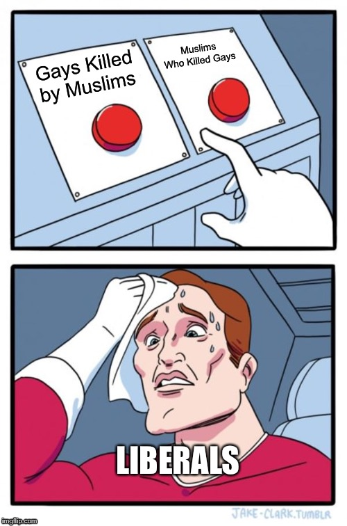 Liberal Conundrum |  Muslims Who Killed Gays; Gays Killed by Muslims; LIBERALS | image tagged in memes,two buttons,butthurt liberals | made w/ Imgflip meme maker