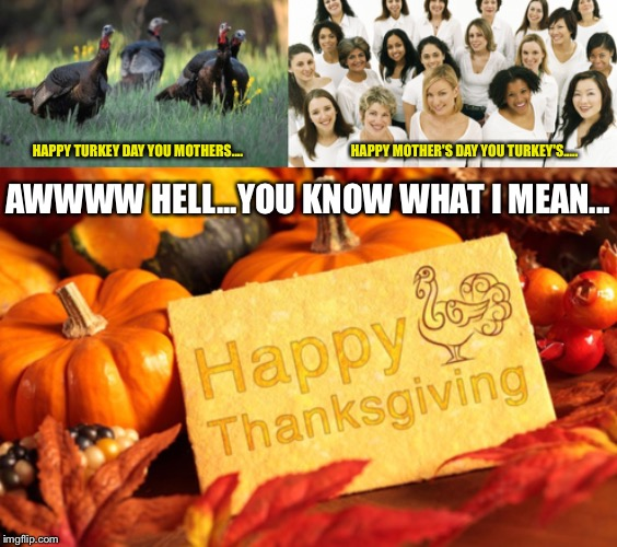 HAPPY TURKEY DAY YOU MOTHERS....                                        HAPPY MOTHER'S DAY YOU TURKEY'S..... AWWWW HELL...YOU KNOW WHAT I ME | image tagged in happy thanksgiving | made w/ Imgflip meme maker