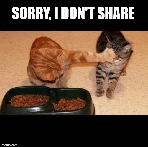 cats share food | SORRY, I DON'T SHARE | image tagged in cats share food | made w/ Imgflip meme maker