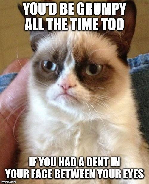 Grumpy Cat | YOU'D BE GRUMPY ALL THE TIME TOO IF YOU HAD A DENT IN YOUR FACE BETWEEN YOUR EYES | image tagged in memes,grumpy cat | made w/ Imgflip meme maker