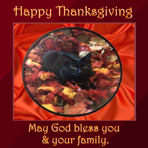 Happy Thanksgiving | Happy Thanksgiving | May God bless you & your family. | image tagged in thanksgiving,black cat,fall,christian | made w/ Imgflip demotivational maker