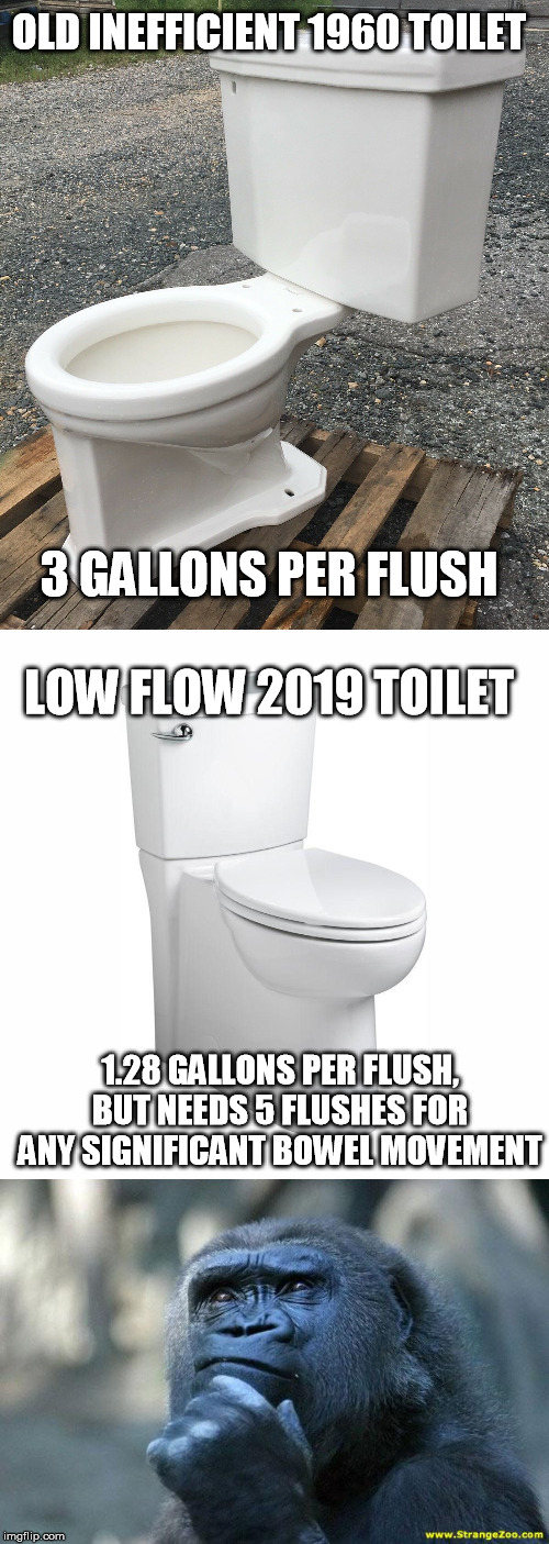 60 years of scientific advancement down the tubes... | OLD INEFFICIENT 1960 TOILET 1.28 GALLONS PER FLUSH, BUT NEEDS 5 FLUSHES FOR ANY SIGNIFICANT BOWEL MOVEMENT 3 GALLONS PER FLUSH LOW FLOW 2019 | image tagged in deep thoughts,toilets,low flow | made w/ Imgflip meme maker