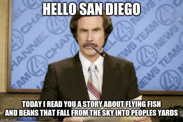 Ron Burgundy | HELLO SAN DIEGO TODAY I READ YOU A STORY ABOUT FLYING FISH AND BEANS THAT FALL FROM THE SKY INTO PEOPLES YARDS | image tagged in memes,ron burgundy | made w/ Imgflip meme maker