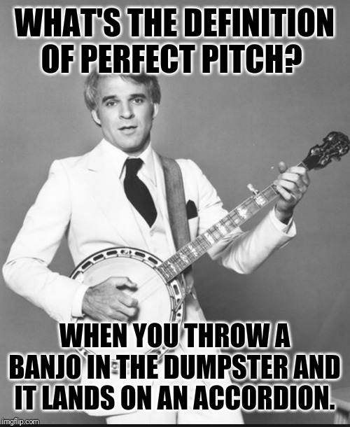 steve martin the jerk | WHAT'S THE DEFINITION OF PERFECT PITCH? WHEN YOU THROW A BANJO IN THE DUMPSTER AND IT LANDS ON AN ACCORDION. | image tagged in steve martin the jerk,banjo | made w/ Imgflip meme maker