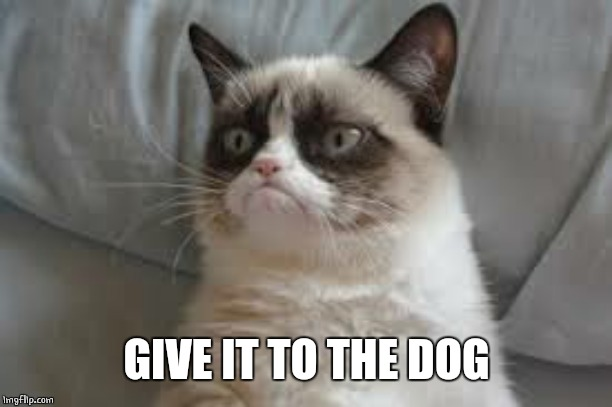 Grumpy cat | GIVE IT TO THE DOG | image tagged in grumpy cat | made w/ Imgflip meme maker