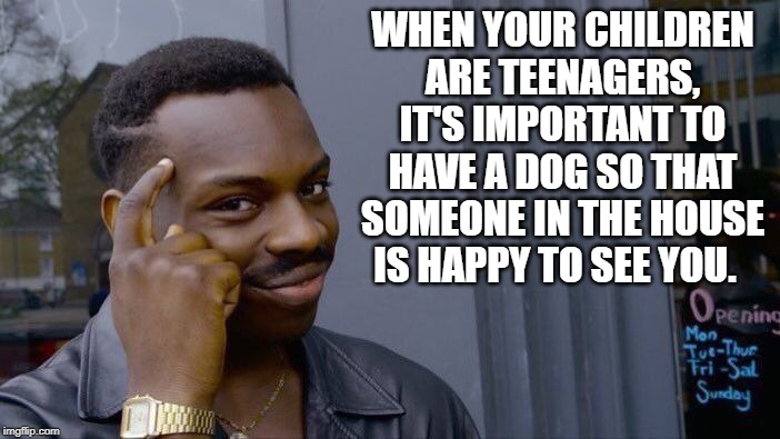 oh yea! | WHEN YOUR CHILDREN ARE TEENAGERS, IT'S IMPORTANT TO HAVE A DOG SO THAT SOMEONE IN THE HOUSE IS HAPPY TO SEE YOU. | image tagged in memes,roll safe think about it | made w/ Imgflip meme maker