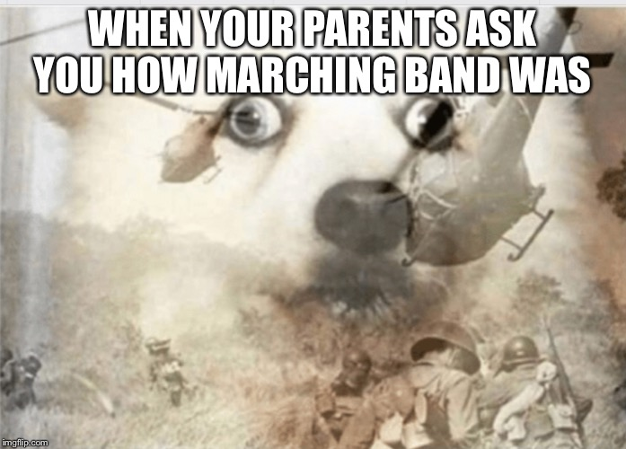 PTSD dog | WHEN YOUR PARENTS ASK YOU HOW MARCHING BAND WAS | image tagged in ptsd dog | made w/ Imgflip meme maker