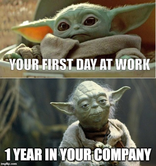 YOUR FIRST DAY AT WORK; 1 YEAR IN YOUR COMPANY | image tagged in baby yoda,memes,funny,work meme,cute | made w/ Imgflip meme maker