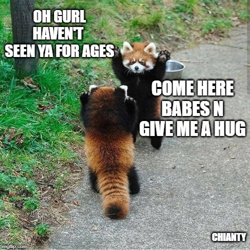 Gurl | OH GURL HAVEN'T  SEEN YA FOR AGES CHIANTY COME HERE BABES N GIVE ME A HUG | image tagged in hug | made w/ Imgflip meme maker