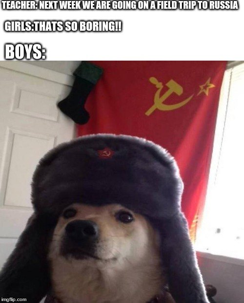 Russian Doge | TEACHER: NEXT WEEK WE ARE GOING ON A FIELD TRIP TO RUSSIA GIRLS:THATS SO BORING!! BOYS: | image tagged in russian doge | made w/ Imgflip meme maker