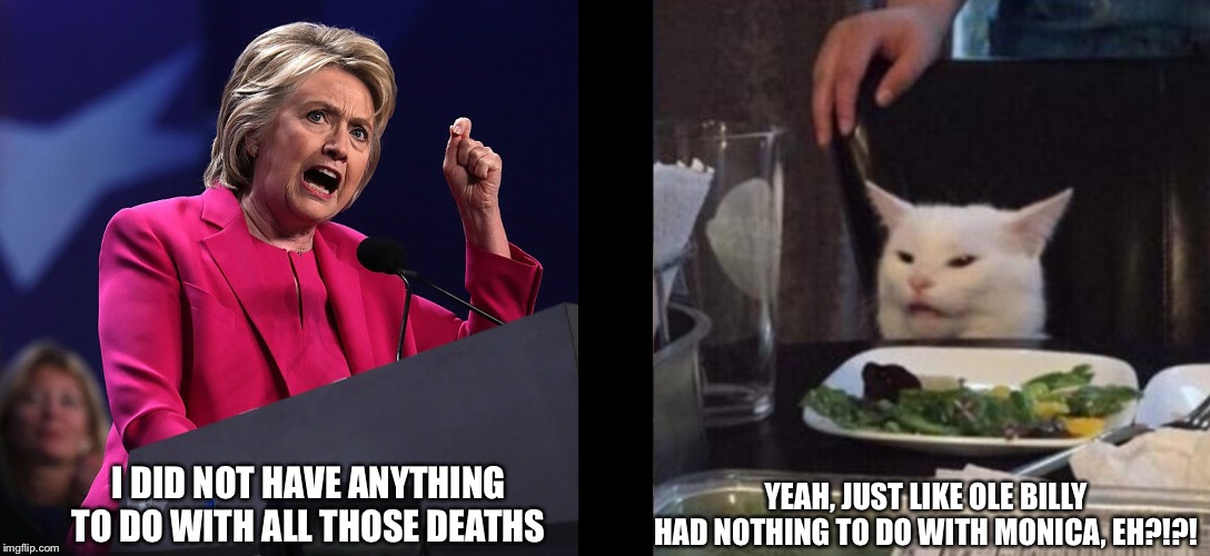 I DID NOT HAVE ANYTHING TO DO WITH ALL THOSE DEATHS; YEAH, JUST LIKE OLE BILLY HAD NOTHING TO DO WITH MONICA, EH?!?! | image tagged in hillary clinton,cat | made w/ Imgflip meme maker
