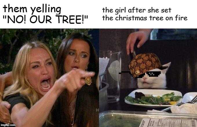 "Woman Yelling At Cat Meme | them yelling ""NO! OUR TREE!"" the girl after she set the christmas tree on fire 