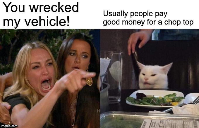 Woman Yelling At Cat Meme | You wrecked my vehicle! Usually people pay good money for a chop top | image tagged in memes,woman yelling at cat | made w/ Imgflip meme maker