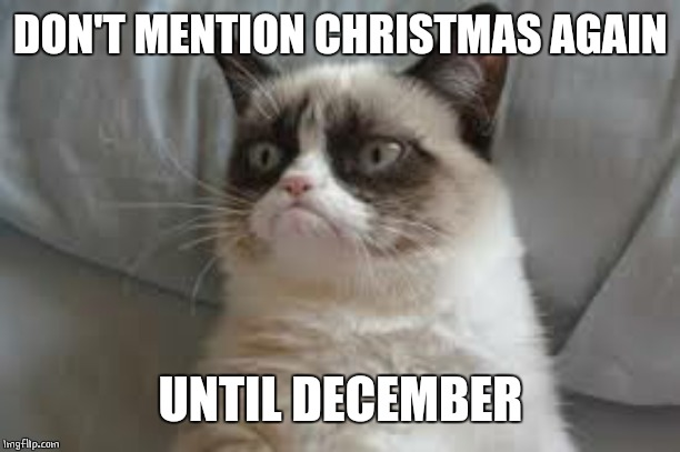 Grumpy cat | DON'T MENTION CHRISTMAS AGAIN UNTIL DECEMBER | image tagged in grumpy cat | made w/ Imgflip meme maker