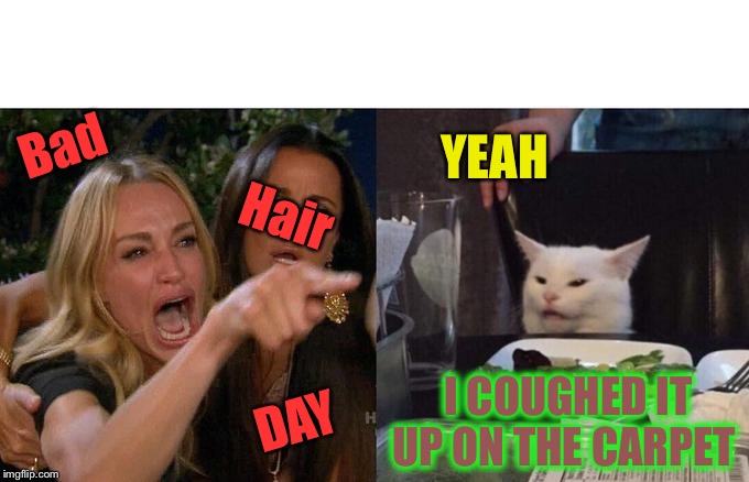 Woman Yelling At Cat Meme | Bad Hair DAY YEAH I COUGHED IT UP ON THE CARPET | image tagged in memes,woman yelling at cat | made w/ Imgflip meme maker