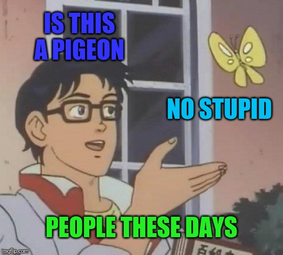 Is This A Pigeon Meme | IS THIS A PIGEON NO STUPID PEOPLE THESE DAYS | image tagged in memes,is this a pigeon | made w/ Imgflip meme maker