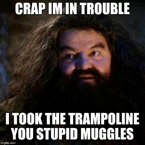 CRAP IM IN TROUBLE I TOOK THE TRAMPOLINE YOU STUPID MUGGLES | image tagged in you're a wizard harry | made w/ Imgflip meme maker
