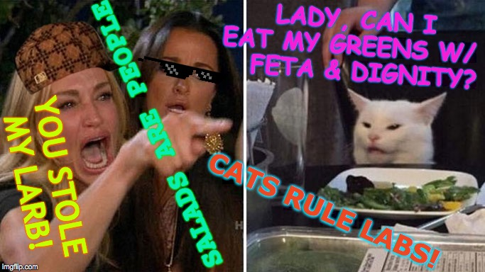 Did He Say Feta Or PETA? | YOU STOLE  MY LARB! SALADS ARE PEOPLE LADY, CAN I EAT MY GREENS W/    FETA & DIGNITY? CATS RULE LABS! | image tagged in angry lady cat,memes,salad,reality tv,cheesy,take a seat cat | made w/ Imgflip meme maker
