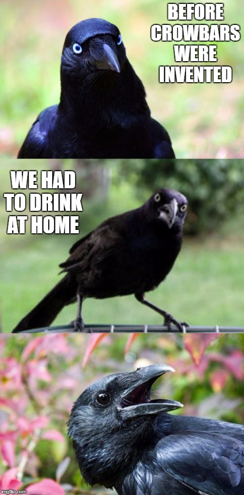 bad pun crow |  BEFORE CROWBARS WERE INVENTED; WE HAD TO DRINK AT HOME | image tagged in bad pun crow,random,bars,home | made w/ Imgflip meme maker
