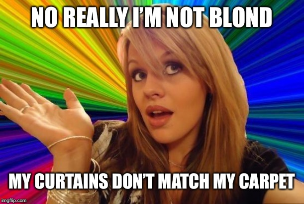 Dumb Blonde | NO REALLY I'M NOT BLOND MY CURTAINS DON'T MATCH MY CARPET | image tagged in memes,dumb blonde | made w/ Imgflip meme maker