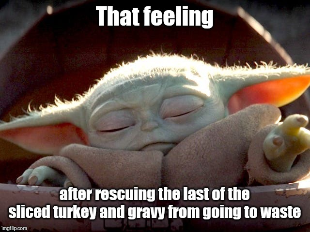 Captain Tryptophan |  That feeling; after rescuing the last of the sliced turkey and gravy from going to waste | image tagged in baby yoda,thanksgiving,turkey,tryptophan,humor | made w/ Imgflip meme maker