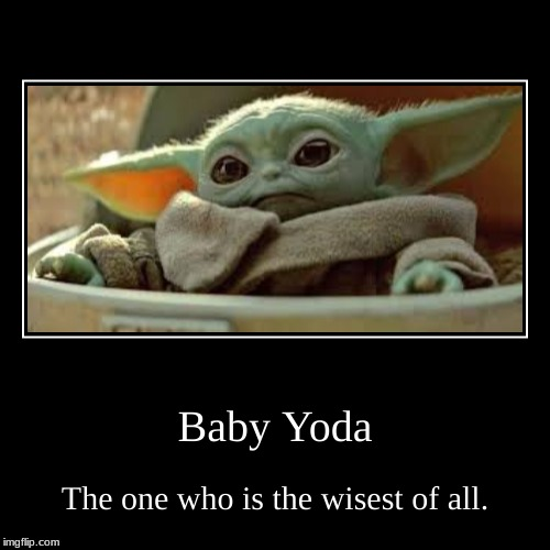 Baby Yoda | The one who is the wisest of all. | image tagged in funny,demotivationals | made w/ Imgflip demotivational maker
