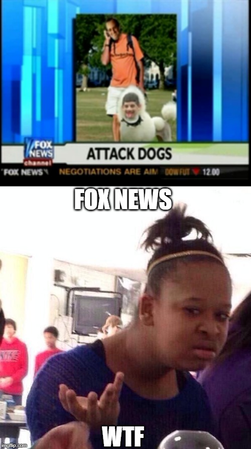 this is crazy |  FOX NEWS; WTF | image tagged in memes,black girl wat,fox news,funny,attack,dogs | made w/ Imgflip meme maker