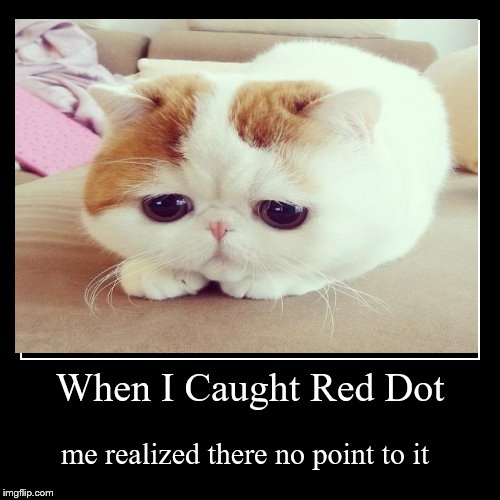 When I Caught Red Dot | me realized there no point to it | image tagged in funny,demotivationals | made w/ Imgflip demotivational maker