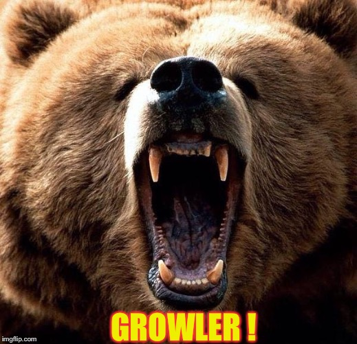 Don't poke the bear  | GROWLER ! | image tagged in don't poke the bear | made w/ Imgflip meme maker