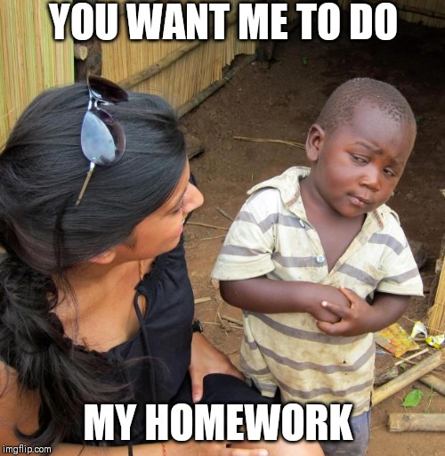 3rd World Sceptical Child | YOU WANT ME TO DO MY HOMEWORK | image tagged in 3rd world sceptical child | made w/ Imgflip meme maker