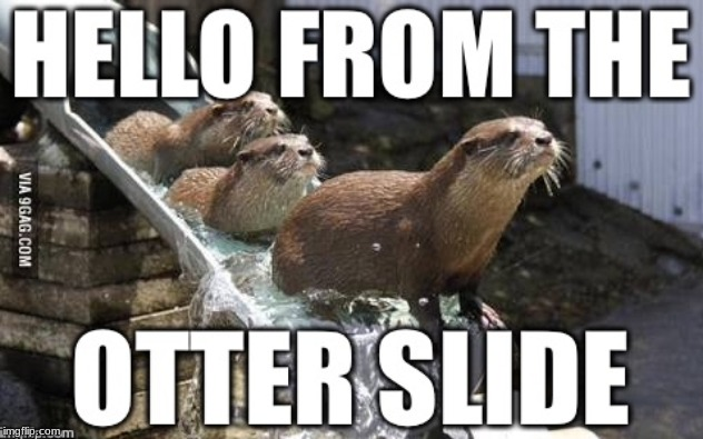 image tagged in hello,adele hello,otter slide,hello from the otter slide | made w/ Imgflip meme maker