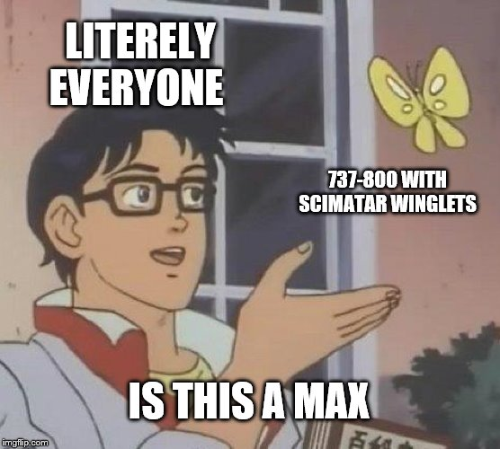 Is This A Pigeon | LITERELY EVERYONE 737-800 WITH SCIMATAR WINGLETS IS THIS A MAX | image tagged in memes,is this a pigeon | made w/ Imgflip meme maker
